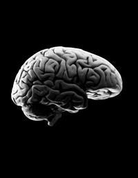 mude-as-suas-crencas-evolua-a-sua-mente-parte-i