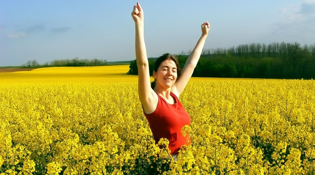 elixir da felicidade