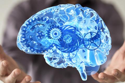 Saúde Mental: Está nas suas mãos e não na sua cabeça