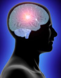 Como os seus pensamentos criam a sua mente?