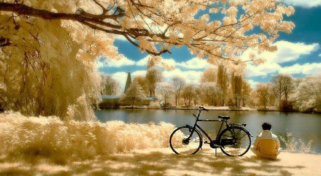 tranquilidade plena